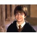 Harry Potter náramek Zlatonka