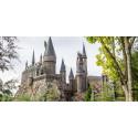Přívěšek Harry Potter - erb Bradavice