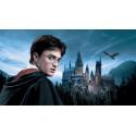 Řetízek Harry Potter - Koště