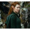 Elfí uši - špičaté