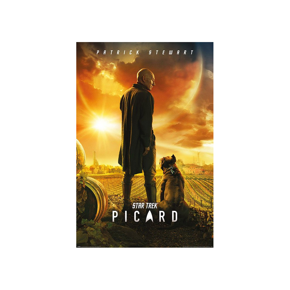 Plakát Star Trek - Picard