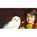 Čepice Harry Potter - Nebelvír