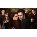 Diář Stmívání (Twilight) - zelený