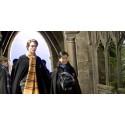 Šál Harry Potter - Mrzimor II