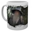 Hrnek Pán Prstenů (Lord of the Rings) - Gandalf
