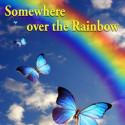 Hrací skříňka Over the Rainbow