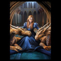 Diář  Anne Stokes - Fierce Loyalty