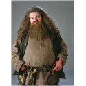 Hrnek Harry Potter - Hagrid 2
