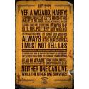 Plakát Harry Potter - Citáty