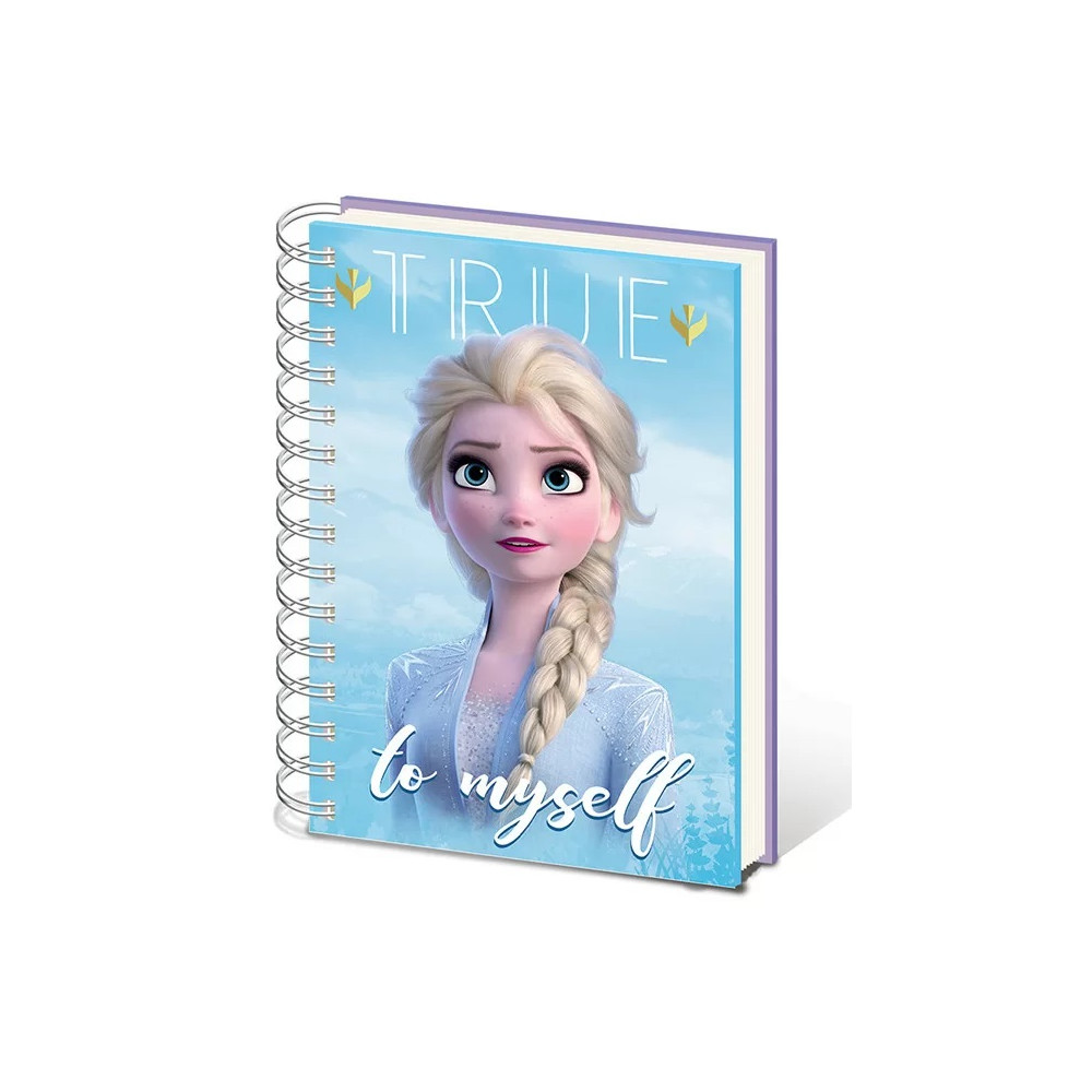 Diář Ledové království 2 (Frozen) - Sisters