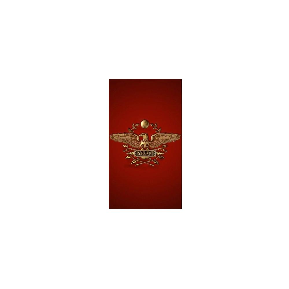 Vlajka Řím - typ 4